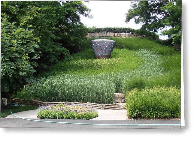 Green Day Greeting Cards - Middle of the Grass Greeting Card by Tim Donovan
