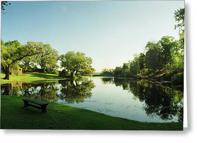 Middleton Greeting Cards - Middleton Place Lagoon Greeting Card by Jan Faul