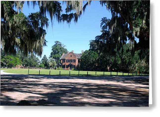 Middleton Greeting Cards - Middleton Plantation Charleston SC Greeting Card by Susanne Van Hulst