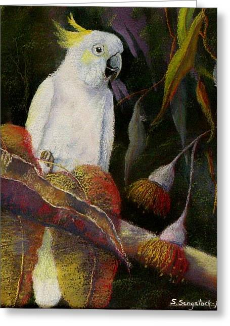 Australia Pastels Greeting Cards - Midnight Watch Greeting Card by Sandra Sengstock-Miller