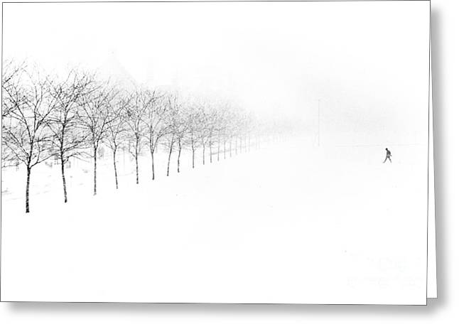 Person Greeting Cards - Midway Plaisance Greeting Card by Jim Wright