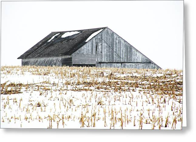 Barn In Winter Greeting Cards - Midwest Barn in Winter Greeting Card by Christine Belt