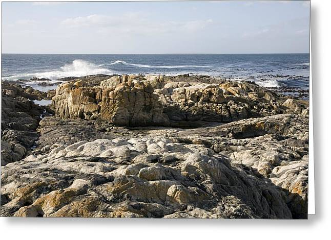 Cape Town Greeting Cards - Migmatite Outcrops Greeting Card by Sheila Terry