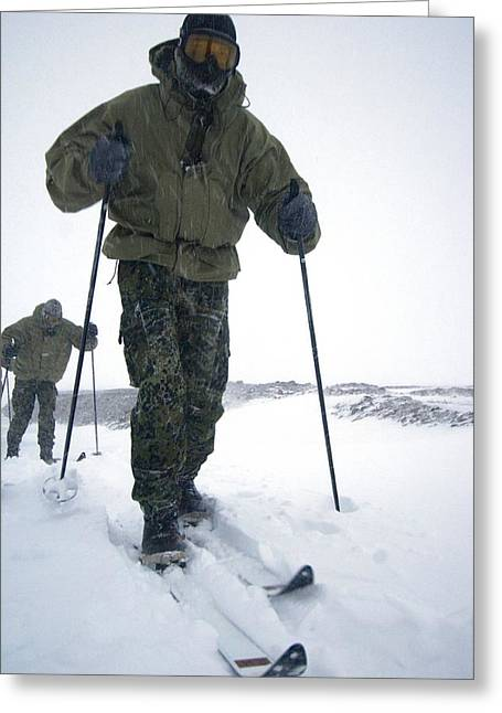 Sledge Patrol Greeting Cards - Military Arctic Survival Training Greeting Card by Louise Murray