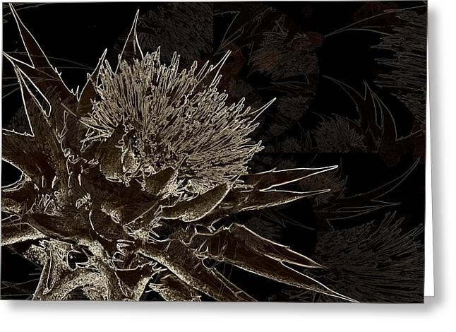 Milk Thistle In Sepia Greeting Card by Shirley Sirois