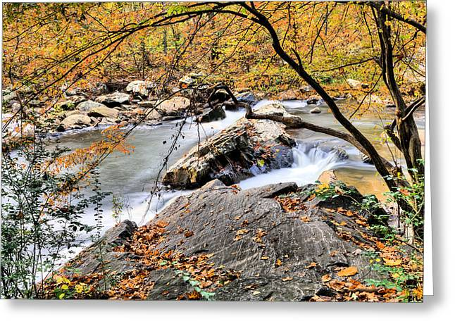 Bull Creek Greeting Cards - Mill Creek  Greeting Card by JC Findley