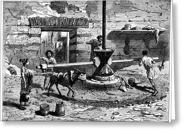 Millstone Greeting Cards - Milling Flour, Historical Artwork Greeting Card by Cci Archives
