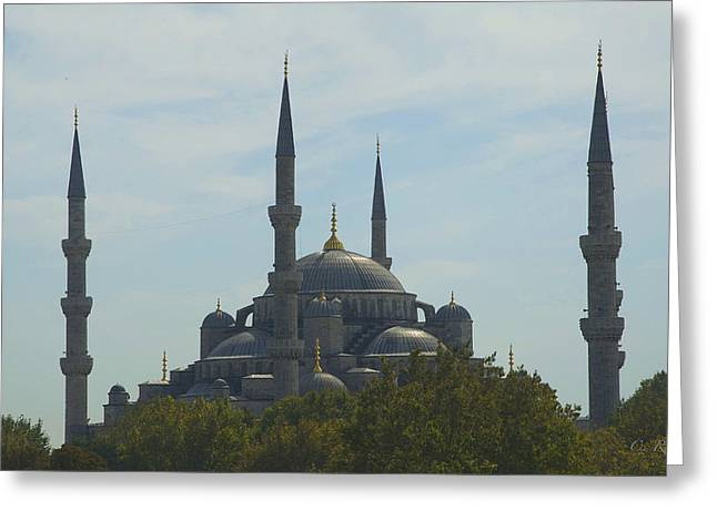 Muslem Greeting Cards - Minarets Greeting Card by Cheri Randolph