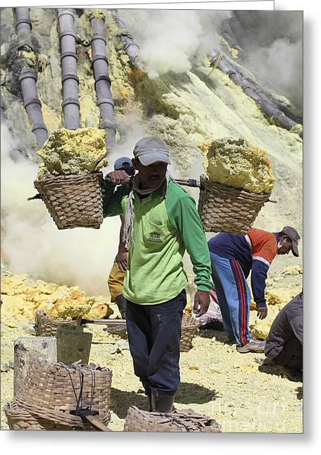 Manual Greeting Cards - Miner Carrying Sulphur In Baskets Greeting Card by Richard Roscoe