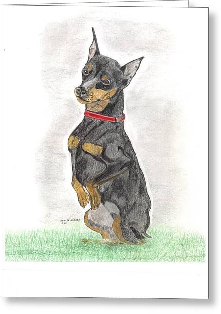 Guard Dog Drawings Greeting Cards - Mini Pin - Vinnie Greeting Card by Don  Gallacher