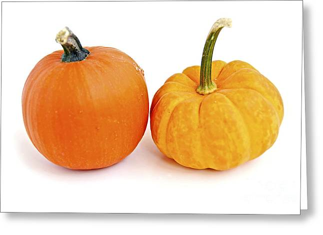 Mini Photographs Greeting Cards - Mini pumpkins Greeting Card by Elena Elisseeva