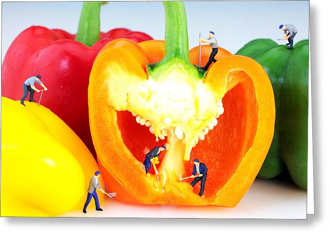 Red Photographs Greeting Cards - Mining in colorful peppers Greeting Card by Paul Ge