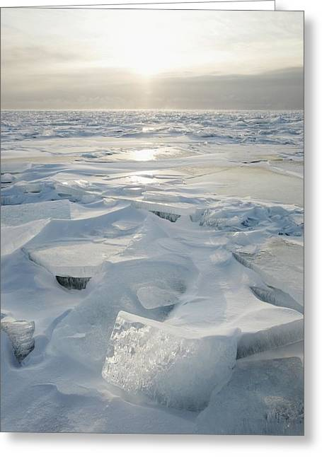 Shards Greeting Cards - Minnesota, United States Of America Ice Greeting Card by Susan Dykstra