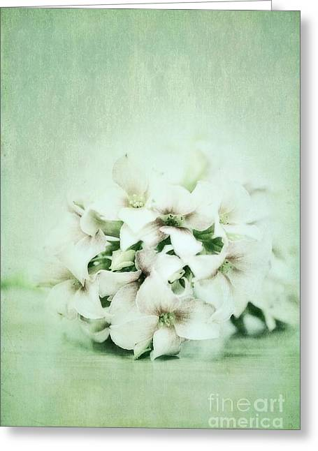 Flower Image Greeting Cards - Mint Green Greeting Card by Priska Wettstein