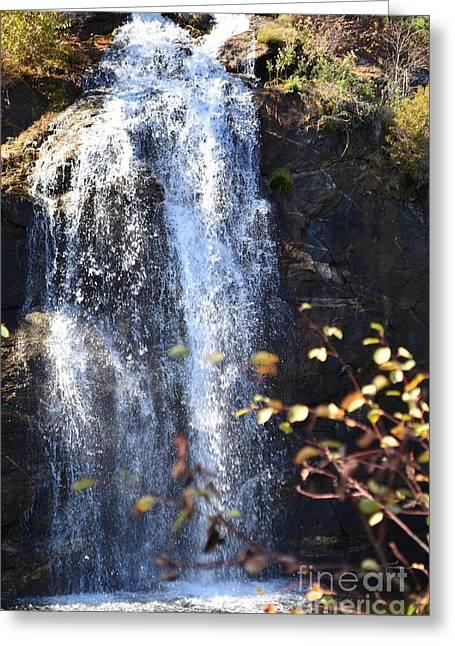 Spokane Greeting Cards - Mirabeau Falls Greeting Card by Greg Patzer
