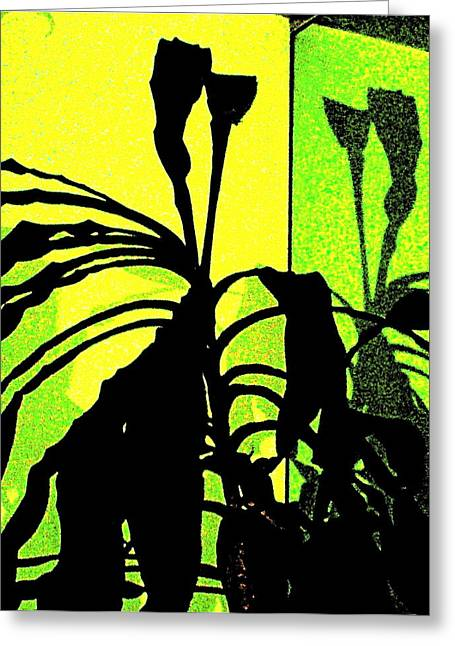 Art Product Drawings Greeting Cards - Mirror Image Greeting Card by Debra  Barrington