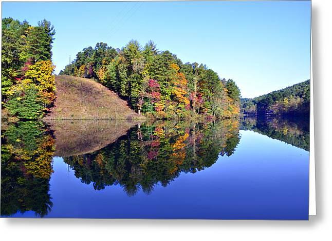 Mirror Image Greeting Card by Susan Leggett