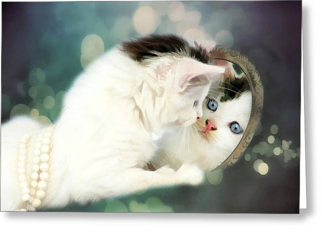 Puss Greeting Cards - Mirror Mirror Greeting Card by Darren Fisher