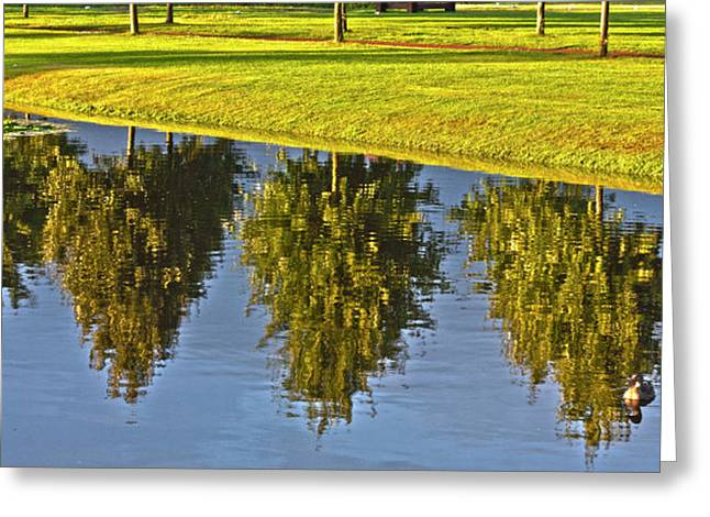 Pond In Park Greeting Cards - Mirroring Trees Greeting Card by Heiko Koehrer-Wagner