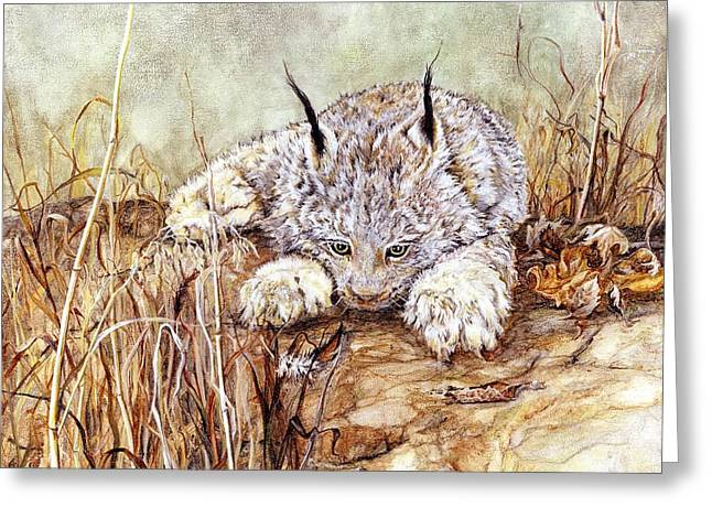Bobcat Mixed Media Greeting Cards - Missed Lunch Greeting Card by Nonie Wideman