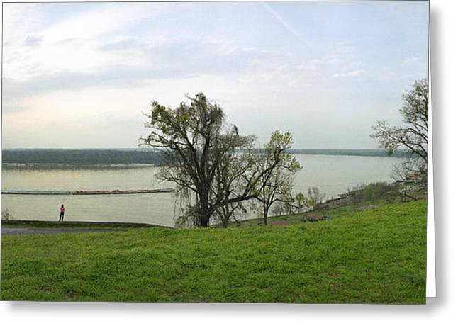 Vicksburg Greeting Cards - Mississippi River from Battery Hill Greeting Card by Jan Faul