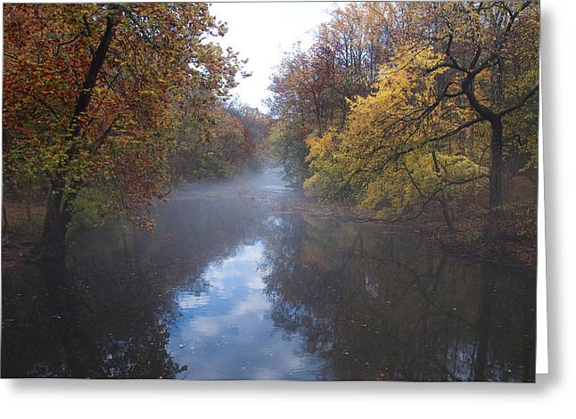 Stream Digital Greeting Cards - Mist Along the Wissahickon Greeting Card by Bill Cannon