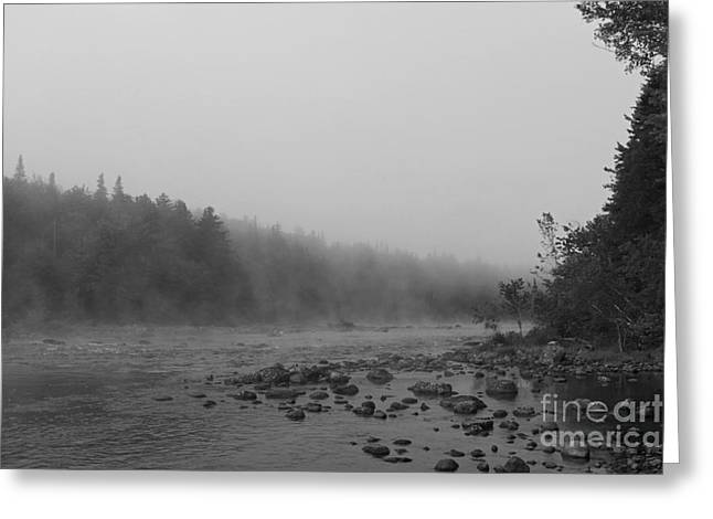 Andro Greeting Cards - Misty Androscoggin Greeting Card by Lloyd Alexander
