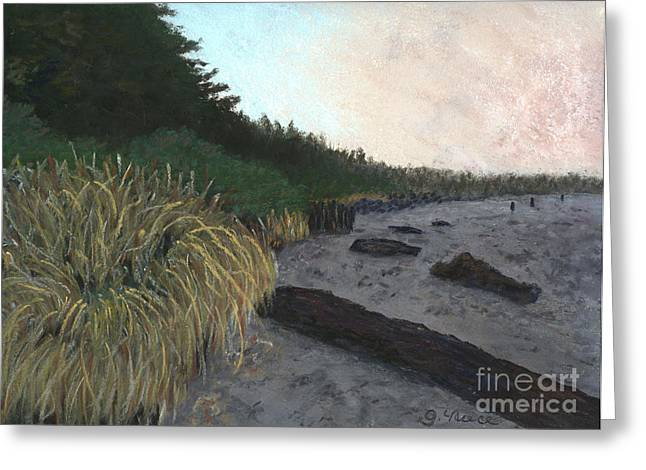 Pacific Northwest Pastels Greeting Cards - Misty Beach Greeting Card by Ginny Neece