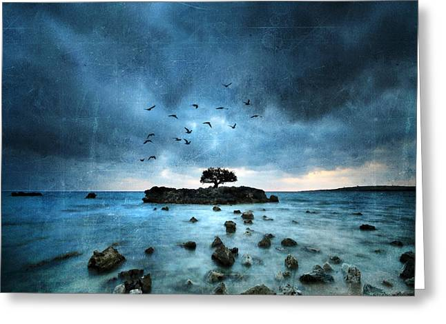 Sea Birds Greeting Cards - Misty Blue Greeting Card by Philippe Sainte-Laudy