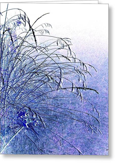 Tranquil Moments Greeting Cards - Misty Blue Greeting Card by Will Borden