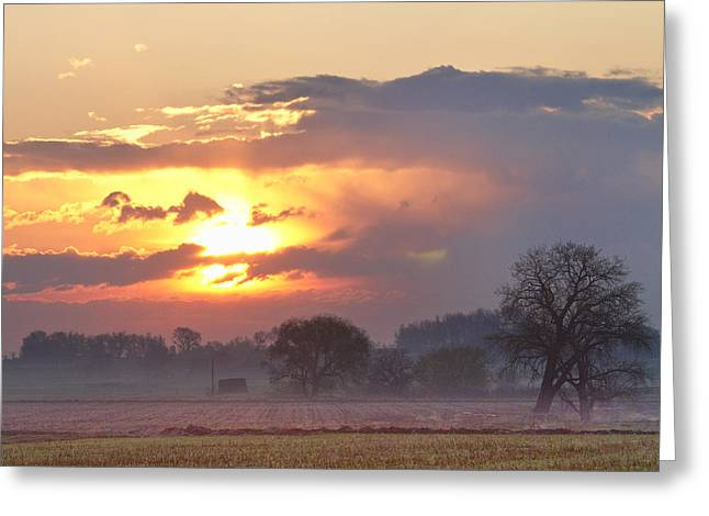 Misty Country Sunrise  Greeting Card by James BO  Insogna