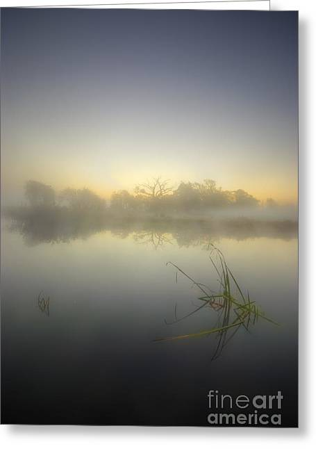 Cold Morning Sun Greeting Cards - Misty Dawn 4.1 Greeting Card by Yhun Suarez