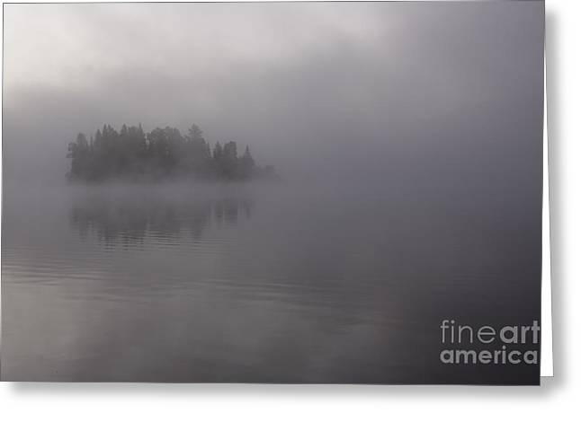 Chris Hill Greeting Cards - Misty Evergreen Island Greeting Card by Chris Hill