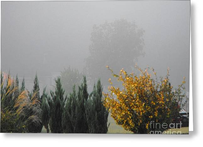 Misty Fall Day Greeting Card by Lorraine Louwerse