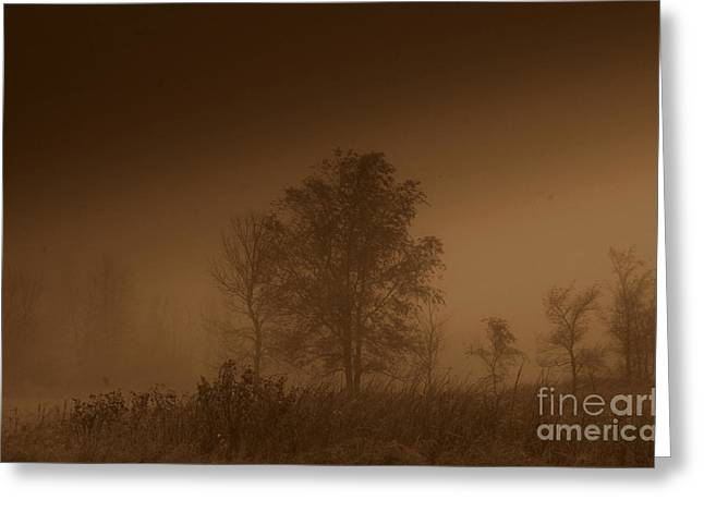 Artowrk Greeting Cards - Misty Greeting Card by Julie Lueders