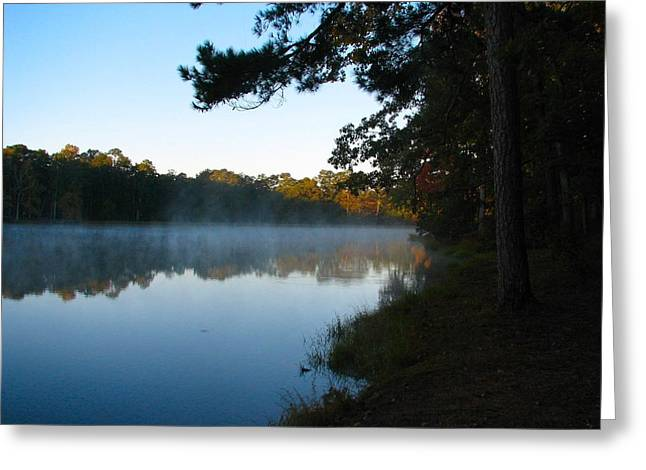 Misty Lake Greeting Card by Don L Williams
