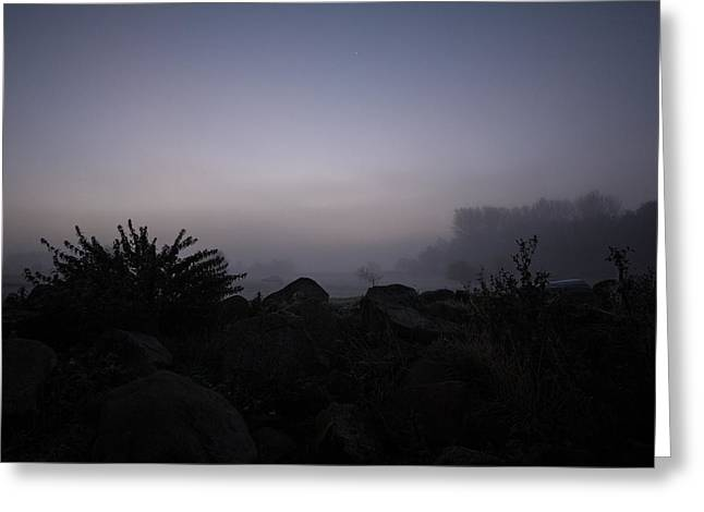 Tough Guys Greeting Cards - Misty Morning Greeting Card by Dawn OConnor