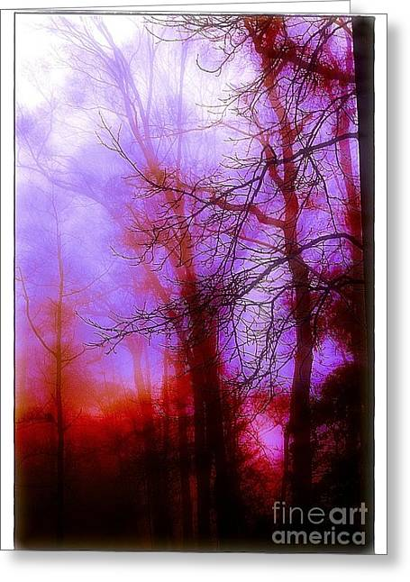 Judi Bagwell Greeting Cards - Misty Morning Greeting Card by Judi Bagwell