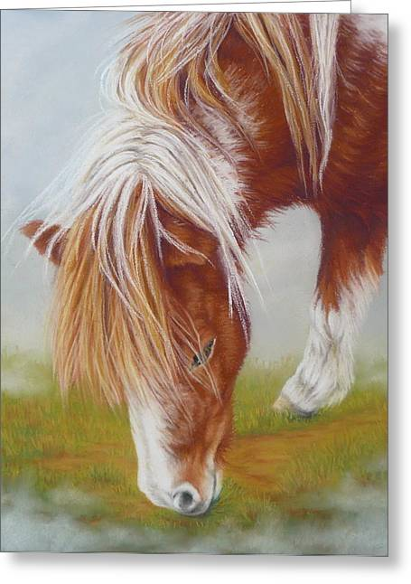 Pony Pastels Greeting Cards - Misty Morning Greeting Card by Margaret Stockdale