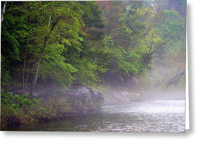 Marty Koch Greeting Cards - Misty Morning on the Buffalo Greeting Card by Marty Koch