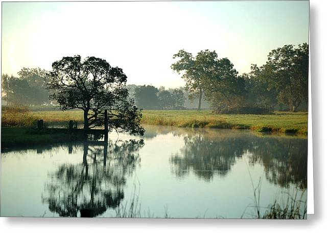 Crimson Tide Digital Art Greeting Cards - Misty Morning Pond Greeting Card by Michael Thomas