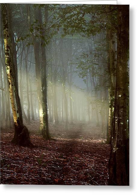 Misty Path Greeting Card by Kris Dutson
