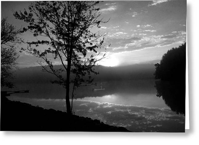 Arrow-leaf Greeting Cards - Misty Reflections BW Greeting Card by David Dehner