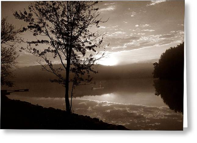 Arrow-leaf Greeting Cards - Misty Reflections S Greeting Card by David Dehner
