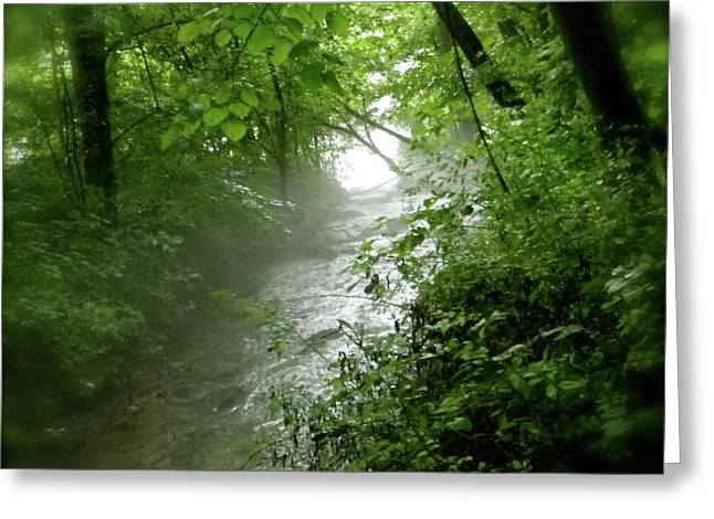 misty stream Greeting Card by Tina Valvano