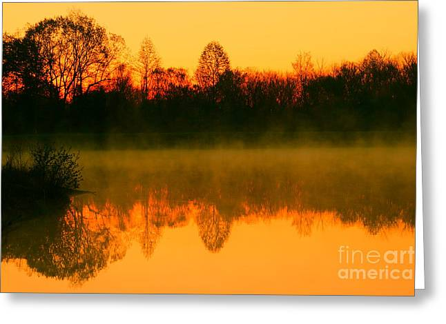 Trees Reflecting In Water Greeting Cards - Misty Sunrise Greeting Card by Morgan Hill
