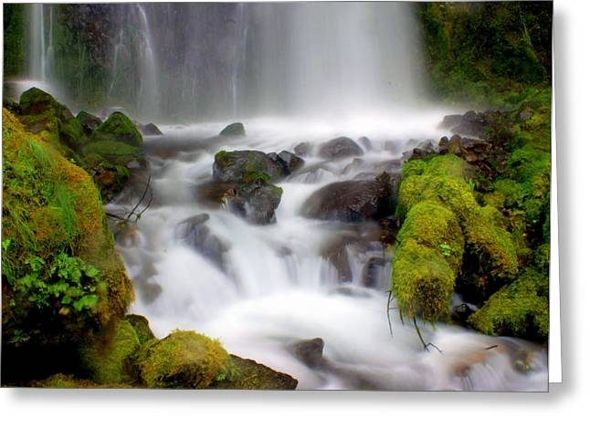 Marty Koch Greeting Cards - Misty Waters Greeting Card by Marty Koch