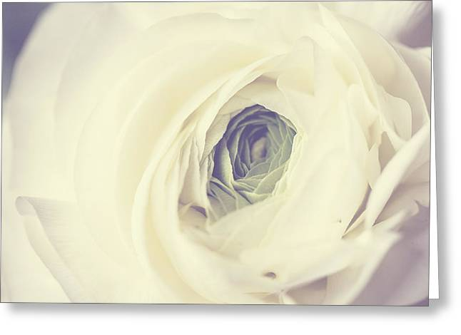 Ranunculus Greeting Cards - Modern Ranunculus Greeting Card by Lisa Russo