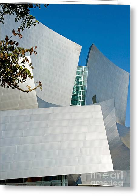 Curvilinear Greeting Cards - Modern Walt Disney Concert Hall in Los Angeles California Greeting Card by ELITE IMAGE photography By Chad McDermott