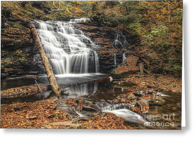 Tonemapping Greeting Cards - Mohican Falls October 2012 Greeting Card by Aaron Campbell